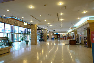 Capital Itaewon Hotel