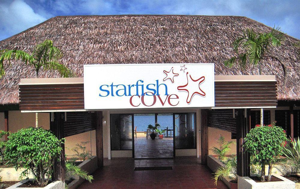 Starfish Cove
