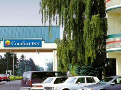 Comfort Inn Clifton Hill