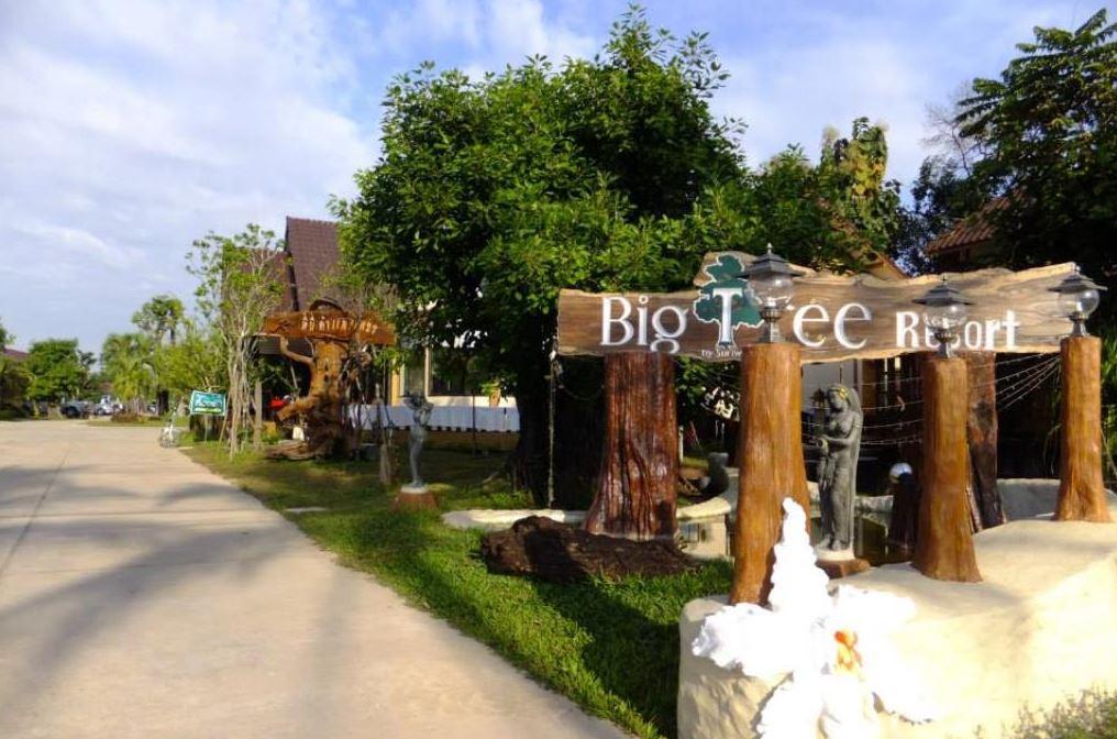 Maiyai Resort - Big Tree