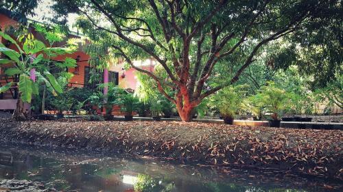 วรากรบ้านสวน อัมพวา