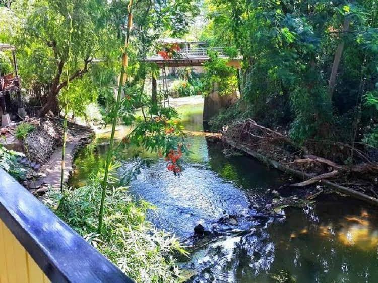 Bann Yang Tree Homestay at Pakchong
