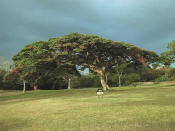 ShangriLaS Fijian Resort And Spa Yanuca