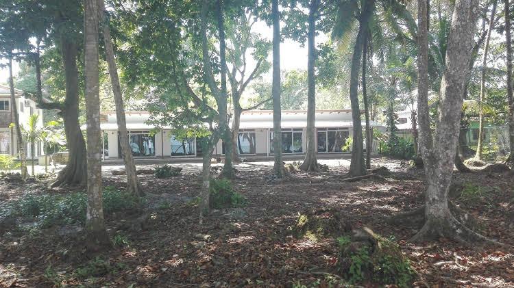 Cahuita Inn