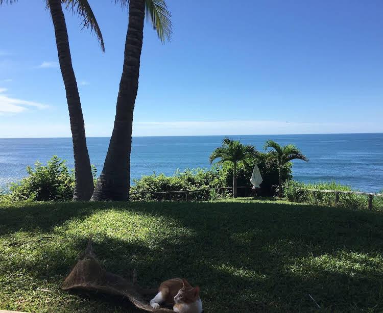 Punta Franca