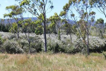 Wetland View Park