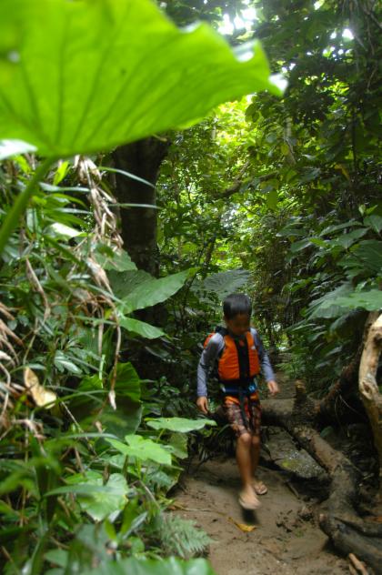 Explore Ishigaki Island! Jungle Trekking & Zip Line