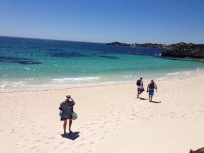 ทัวร์ปั่นจักรยานและดำน้ำตื้นที่เกาะร็อตต์เนสท์จากเพิร์ธ, ออสเตรเลีย
