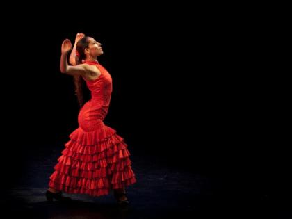 บัตรเข้าโรงละคร Arte Flamenco
