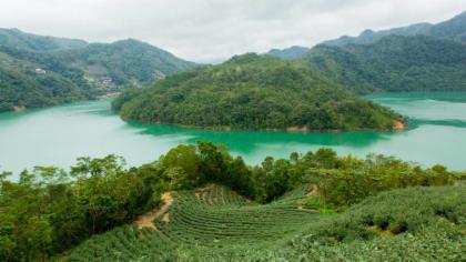 "Thousand Island Lake"" & Pinglin Tea Plantation"