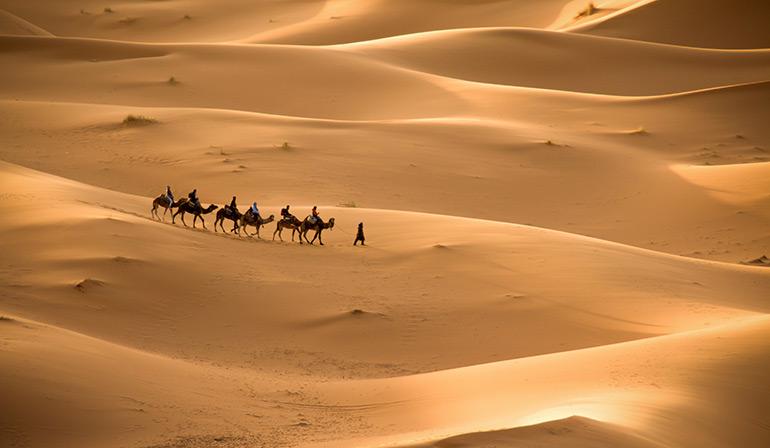 tour摩洛哥