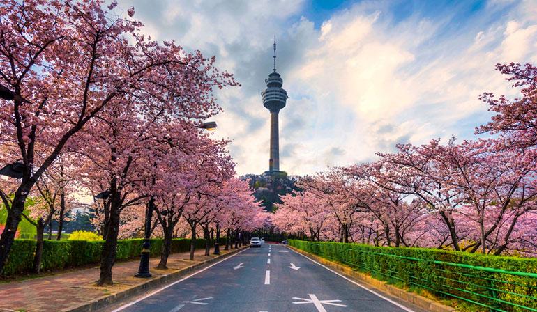 ทัวร์เกาหลีใต้